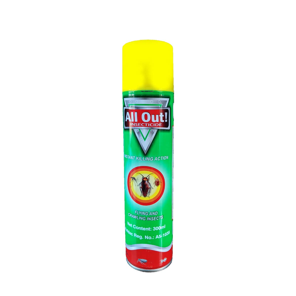 All Out! Insecticide 300ml